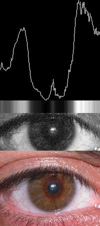 Iris Localization in iris recognition algorithm - ImageMagick